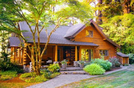 Деревянный дом в поле — 50 красивых фото